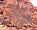Calico Hills The Magic Bus 2.jpg