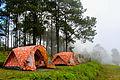 Camping Tent at Doi Angkhang Mountain, Chiangmai, Thailand.jpg