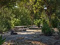 Campsite at Temple Bar (9e959149-58ce-4cc7-a220-959535fe2d7c).jpg