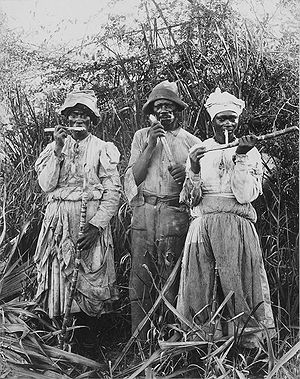 History of Jamaica - Sugar cane cutters in Jamaica, 1880