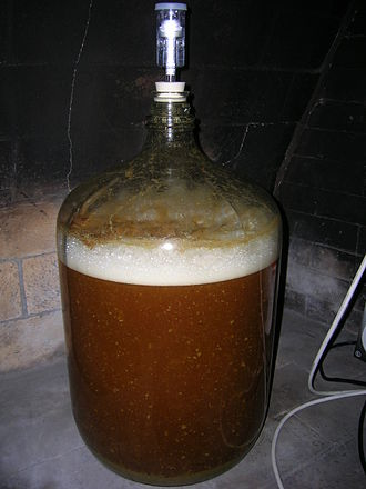 Carboy - A 6.5-gallon (25 l) glass carboy acting as a fermentation vessel for beer. It is fitted with a fermentation lock.