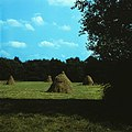 Carpathian (1987). (25492695131).jpg