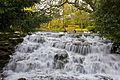 Carshalton London Borough of Sutton Waterfall The pond 2.jpg