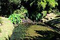 Caserta jardín inglés. 20.JPG