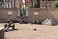 Castel Sant'Angelo Artillery (48494803522).jpg