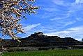 Castell de Timor, Ribera d'Ondara, la Segarra. (39973020815).jpg