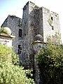 Castle Kennedy - geograph.org.uk - 463.jpg