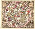 Cellarius schiller 2.jpg