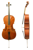 CelloVioloncello