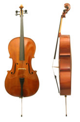 Cello, front and side view. The endpin at the bottom is retracted or removed for easier storage and transportation, and adjusted for height in accordance to the player.