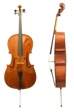 Cello front side.png