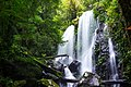 Chalahn Falls in Lamington National Park.jpg