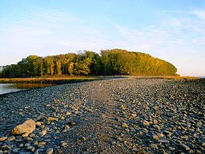Charles Island Connecticut Wikipedia