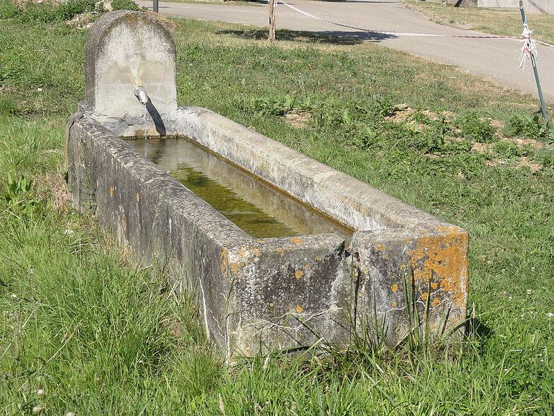 Chattancourt (Meuse) fontaine-abreuvoir