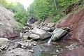 Chedoke Valley - panoramio (1).jpg