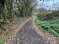 Chemin Mussiat - Crottet (FR01) - 2020-12-03 - 1.jpg