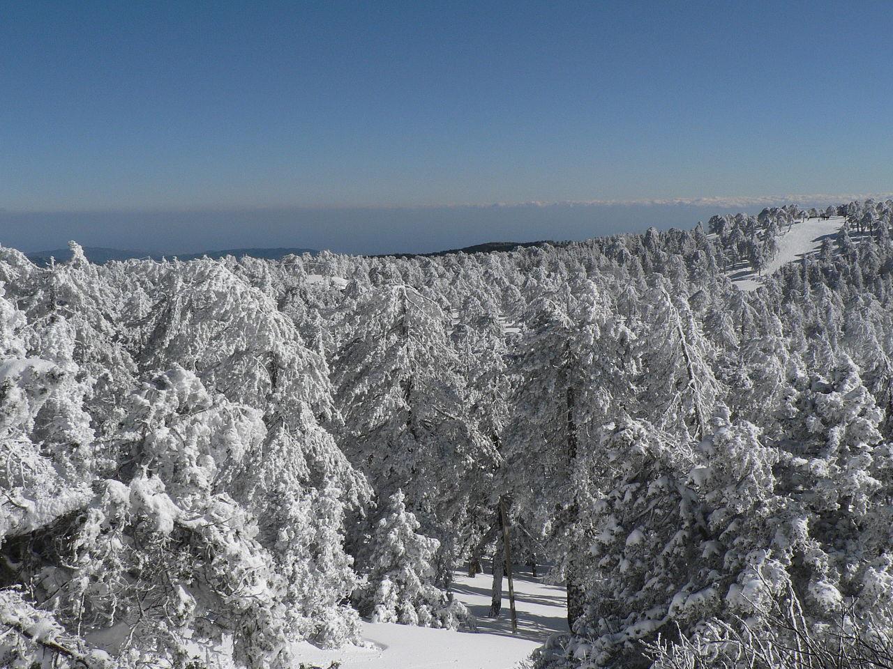 Pegunungan Troodos mengalami hujan salju lebat di musim dingin