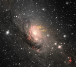 Circinus Galaxy.png