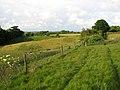 Circular walk between Bramerton and Surlingham - geograph.org.uk - 1344182.jpg