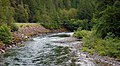 Clackamas Wild and Scenic River (27973088346).jpg
