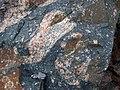 Clast-rich impact pseudotachylite (Sudbury Breccia, Paleoproterozoic, 1.85 Ga; Windy Lake Northwest roadcut, Sudbury Impact Structure, Ontario, Canada) 52 (40791617433).jpg