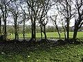 Cloghfin Townland - geograph.org.uk - 1200501.jpg