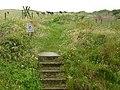 Coastal path entering the NT's Porth Gwynt estate - geograph.org.uk - 1400650.jpg