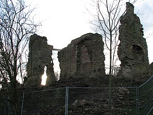 Codnor Castle - View from NE