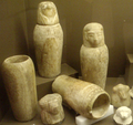 CollectionOfCanopicJarsAndStoppers RosicrucianEgyptianMuseum.png