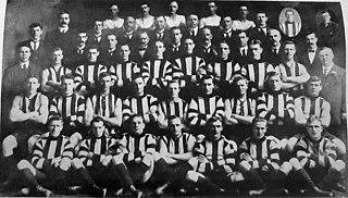 1917 VFL season