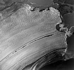 Columbia Glacier, Calving terminus, August 24, 1964 (GLACIERS 1083).jpg