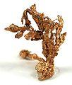 Copper-270288.jpg