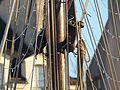 Corbeau des mers dans le port de Vannes 09.jpg