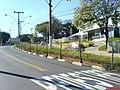 Corredor de ônibus das Amoreiras - Liga o Centro ao Bairro Campos Elisios - panoramio - Paulo Humberto (2).jpg