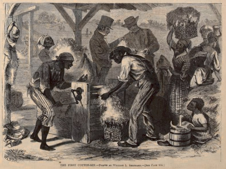 African slaves using Eli Whitney's cotton Gin