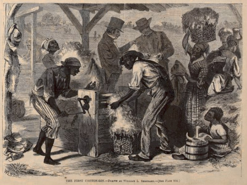 Cotton gin harpers
