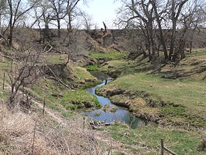 National Register of Historic Places listings in Nance County, Nebraska - Image: Cottonwood Creek (Nance Co NE) S of Valley Rd facing DS 1