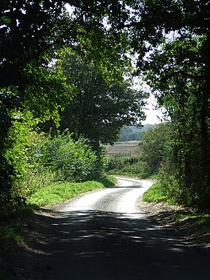 English: Country Road Country road near to Rus...