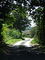Country Road - geograph.org.uk - 1445098.jpg