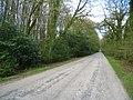 Cowfold Lane - Rotherwick - geograph.org.uk - 1803554.jpg