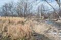Creek lacustuary 02 - Euclid Creek Reservation.jpg