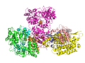 Crystal structure of the hydrophilic domain of respiratory complex I from Thermus thermophilus.png