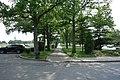 Cunningham Park South td (2019-06-05) 147.jpg