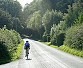 Cyclist on the road to Kilmington - geograph.org.uk - 1478766.jpg