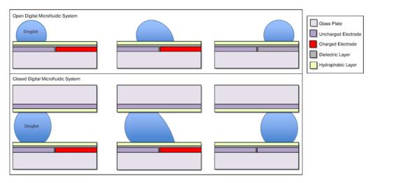 Digital Microfluidics Wikipedia