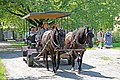 DSC08741 - Horse & Carriage Ride (37078396381).jpg