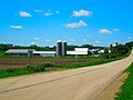 Dairy Farms near Middleton - panoramio.jpg