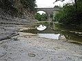 Dalle à Ammonoidea à proximité du pont de Fressac.jpg