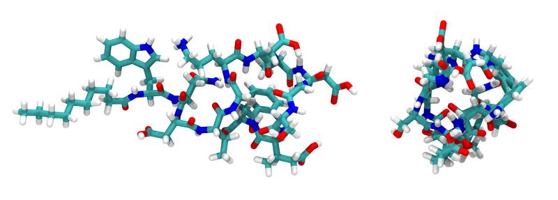 File:Daptomycin 1XT7.png