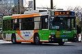 Day 3 - bus (45806947505).jpg